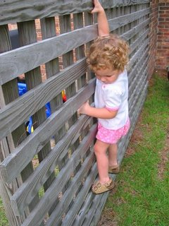 mdf_stuck_fence.jpg